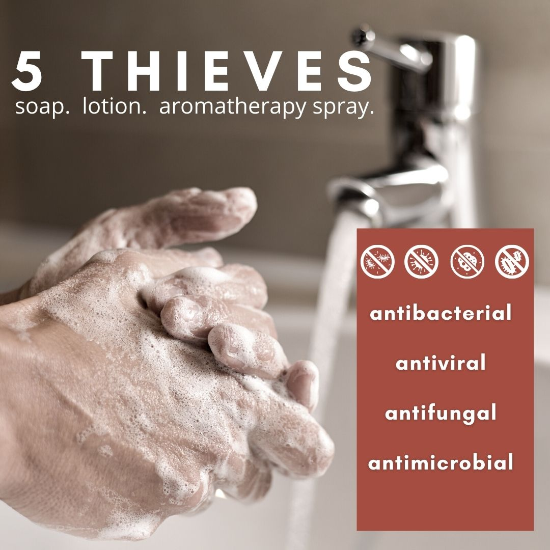 5 Thieves Products