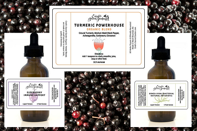 Immune Fortify Kit with Elderberry Tincture