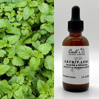Catnip Leaf Herbal Tincture