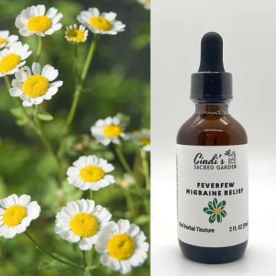 Feverfew Migraine Relief Herbal Tincture