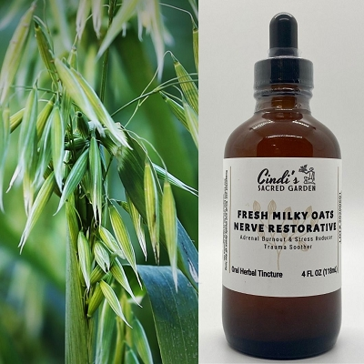 Fresh Milky Oats Tincture (4 oz)