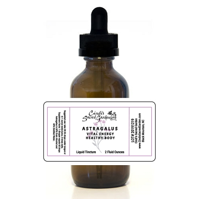 Astragalus Vital Energy Herbal Tincture